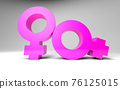 Gender signs illustration for lgbt themed background with two sexual female couple symbols. 3D gender signs for pride month or same sex marriage greeting cards. 3D illustration 76125015