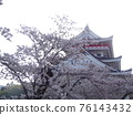 Atami castle and cherry blossoms 76143432