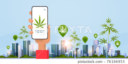 human hand holding smartphone drug dealer order cannabis hemp marijuana or medicine online buying drugs concept mobile app cityscape background flat horizontal 76166953