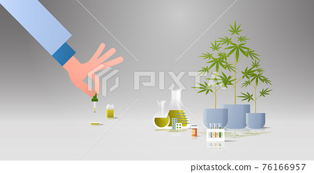 scientist testing cbd hemp oil extracted from a marijuana plant healthcare pharmacy from medical cannabis pharmaceutical industry concept horizontal flat 76166957