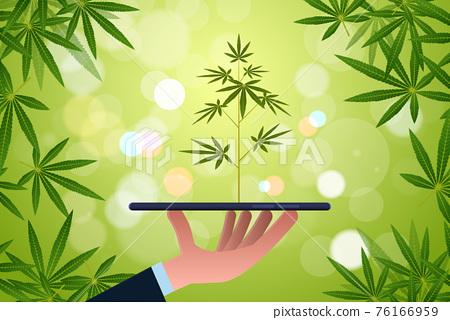 human hand holding smartphone with cannabis plant farm marijuana plantation mobile app concept horizontal flat 76166959