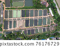 Aquaculture business of prawn and fish farm and aerator pump in dug pond 76176729