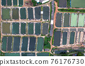 Aquaculture business of prawn and fish farm and aerator pump in dug pond 76176730