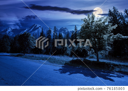 asphalt road through forested mountains at night. beautiful countryside transportation background. composite summer landscape with high tatra ridge in the distance in full moon light 76185803