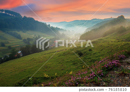 valley on the misty morning. village in the distance. grass and flowers on the hill in morning light. beautiful countryside scenery. red clouds on the sky 76185810