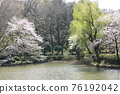 I walked in Mitsuike Park on a sunny day 76192042