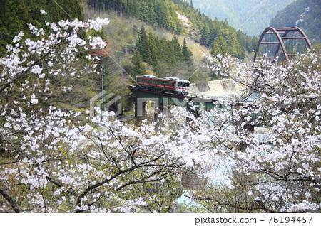 Spring Takayama Main Line 76194457
