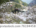 봄의 다카야마 본선 76194458