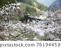 봄의 다카야마 본선 76194459