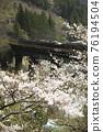 봄의 다카야마 본선 76194504