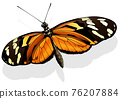 Ismenius Tiger Butterfly 76207884