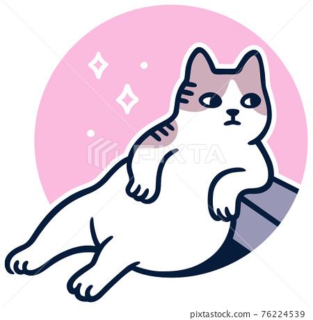 Turkish street cat Tombili 76224539