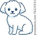 Cute little white fluffy dog 76224541