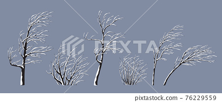 Set of Snow Covered Trees and Bushes 76229559