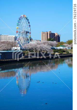 春天 春 隅田川 76229716