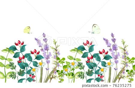 花朵 花 花卉 76235275