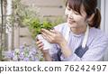 gardening, bloom, blossom 76242497