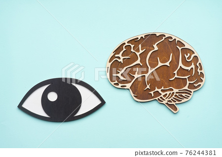 wooden mock eye and brain on blue background 76244381