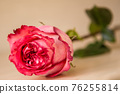 A pretty, natural, scarlet rose lies on a beige surface. 76255814