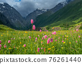 Mountain landscape with blooming meadows 76261440