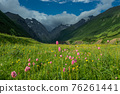 Mountain landscape with blooming meadows 76261441