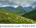 Mountain landscape with blooming meadows 76261445
