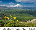 Mount Elbrus and yellow flowers 76261446