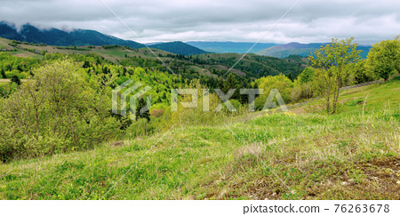rural mountain landscape in spring. grass and trees on hills rolling through the green valley in to the distant ridge beneath a cloudy sky 76263678