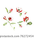 色彩豐富的花卉素材組合和設計元素 76272454