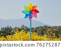 Landscape Pinwheel in Mums Flower Garden with Mountain Background 76275287
