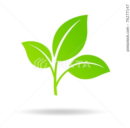 잎 아이콘 76277147