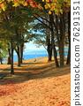 autumn, autumnal, park 76291351