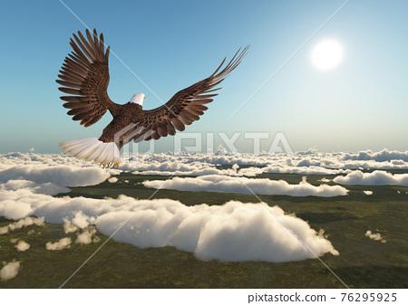 Sea eagle over the clouds 76295925