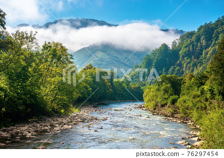 mountain river landscape in summer. wonderful nature scenery on foggy morning. clouds rolling over the distant hill. trees along the stream in the valley. sunny weather with blue sky 76297454