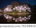 cherry blossoms at night, cherry trees in the evening, cherry blossom 76298830