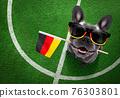 soccer player dog 76303801