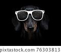 dog isolated on black dramtic dark background 76303813
