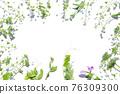 花 植物 框架 76309300