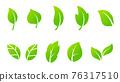 leaf, leafs, leaves 76317510