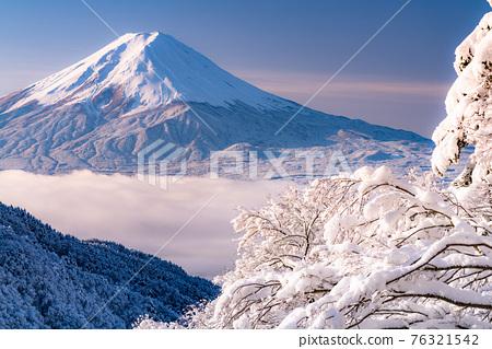 《山梨縣》富士山和樹上的霧rim ・日本的冬季風景 76321542