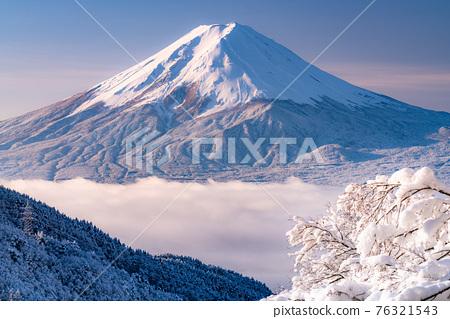 《山梨縣》富士山和樹上的霧rim ・日本的冬季風景 76321543