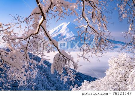 《山梨縣》富士山和樹上的霧rim ・日本的冬季風景 76321547