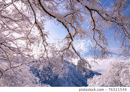 《山梨縣》富士山和樹上的霧rim ・日本的冬季風景 76321549