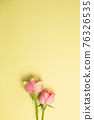Pink rose flowers on yellow background. flat lay, top view, copy space 76326535