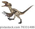 Dinosaur Deinonychus isolated on white background 76331486