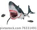 Great white shark isolated on white background 76331491