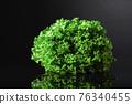 Fresh lettuce salad on a black reflective background. 76340455