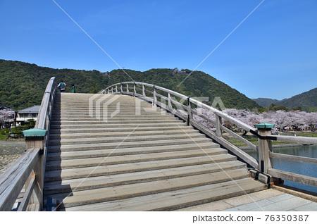 錦帶橋 春天 春 76350387