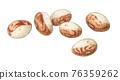 bean, beans, watercolour 76359262