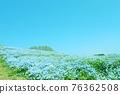 봄의 꽃 ~ 푸른 하늘과 네모 피라의 언덕 76362508